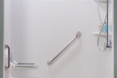 Shower Hand Rail Design
